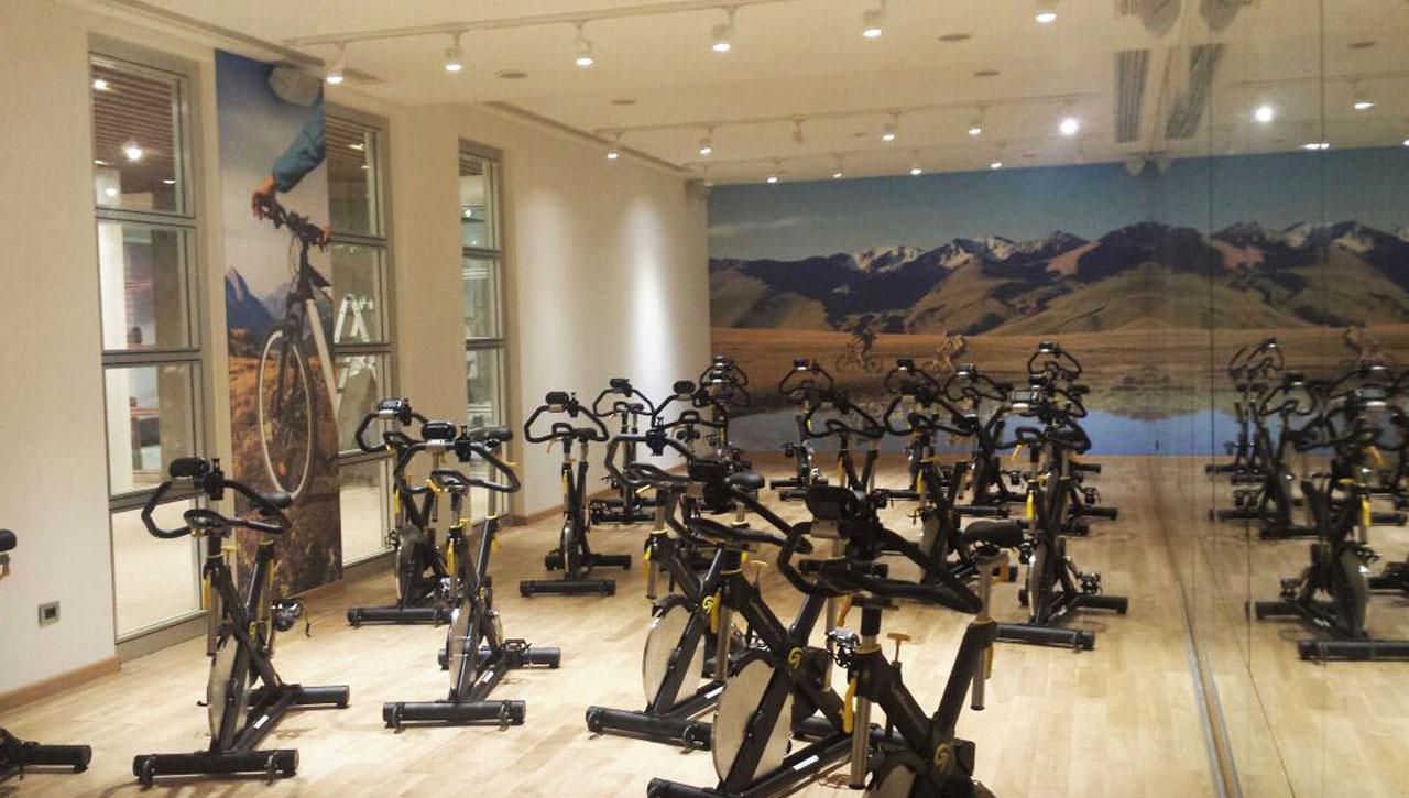 Canvas Wall Gym